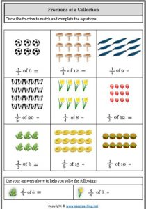 fractions of a collection representing fractions worksheets