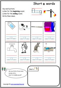 cvc initial final sound cvc worksheets
