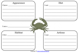 crab learning sheet science
