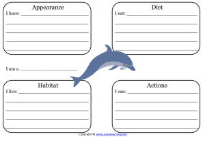 dolphin learning sheet science