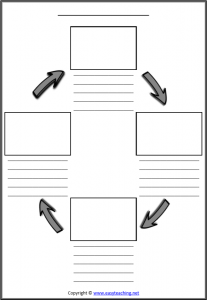 blank life cycle worksheets lifecycle template