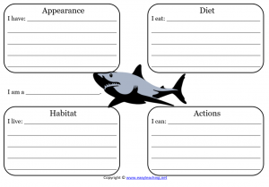 shark learning sheet science