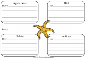 starfish learning sheet science
