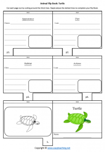 animal worksheets sea turtle flipbook diet habitat