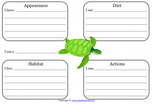 sea turtle learning sheet science