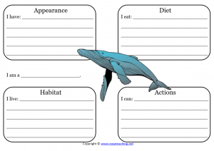 blue whale learning sheet science