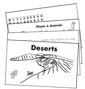 desert folding booklet activity kids biome science