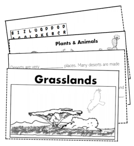 grassland folding booklet activity savannah kids biome science