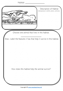 grassland habitat science worksheet