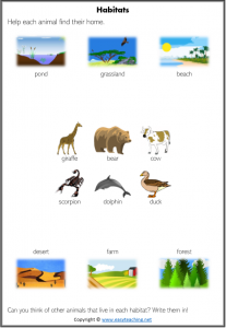 animal homes match habitat match science worksheets