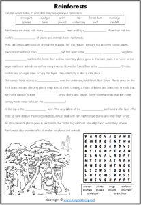 rainforest activity sheet layers cloze reading kids biome science