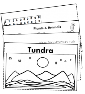 tundra folding booklet activity polar arctic kids biome science