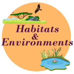 habitats environment worksheets
