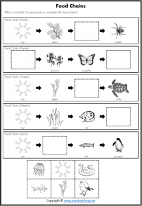 complete food chains worksheet pdf cut paste science