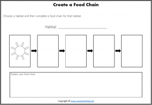 create own food chain worksheet pdf science