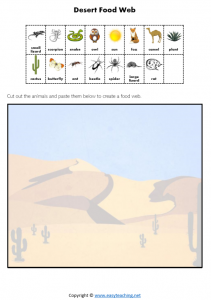 desert food chain food web worksheet science pdf