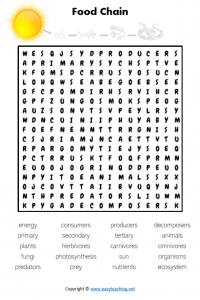 food chain energy word search find a word pdf