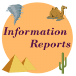 information reports worksheets