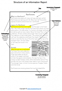 information report worksheets structure poster pdf